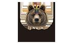 Orgullo Bear